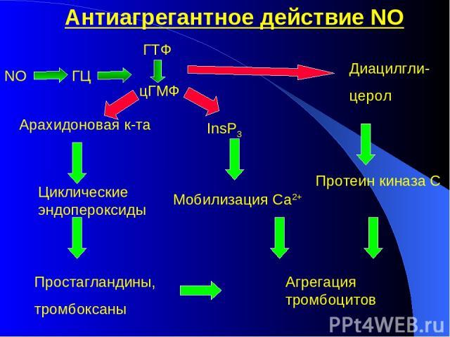 Антиагрегантное действие NO NO ГТФ цГМФ ГЦ Арахидоновая к-та Циклические эндопероксиды Простагландины, тромбоксаны Диацилгли- церол Протеин киназа С InsР3 Мобилизация Са2+ Агрегация тромбоцитов
