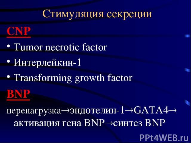 Стимуляция секреции CNP Tumor necrotic factor Интерлейкин-1 Transforming growth factor BNP перенагрузка эндотелин-1 GATA4 активация гена BNP синтез BNP