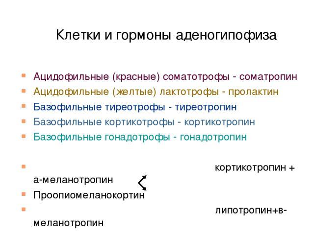 Клетки и гормоны аденогипофиза Ацидофильные (красные) соматотрофы - соматропин Ацидофильные (желтые) лактотрофы - пролактин Базофильные тиреотрофы - тиреотропин Базофильные кортикотрофы - кортикотропин Базофильные гонадотрофы - гонадотропин кортикот…