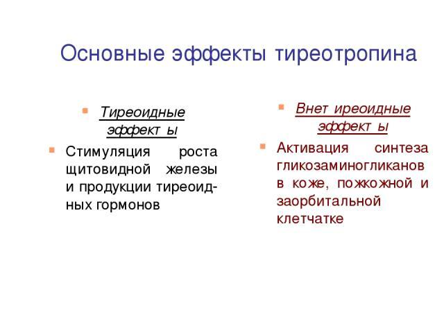 Основные эффекты тиреотропина Тиреоидные эффекты Стимуляция роста щитовидной железы и продукции тиреоид-ных гормонов Внетиреоидные эффекты Активация синтеза гликозаминогликановв коже, пожкожной и заорбитальной клетчатке