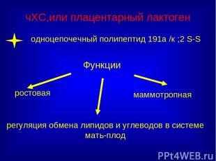 чХС,или плацентарный лактоген ростовая Функции регуляция обмена липидов и углево