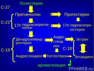 С-27 Холестерин Прегненолон Прогестерон Тестостерон Эстрадиол С-18 С-21 С-19 17