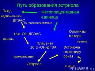ДГЭАС 16 -ОН-ДГЭАС -ОН-ДГЭА 16 Эстриол Эстриола глюкозидуронат в моче Плод Орган