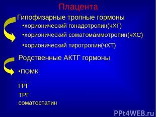 Плацента Гипофизарные тропные гормоны хорионический гонадотропин(чХГ) хорионичес