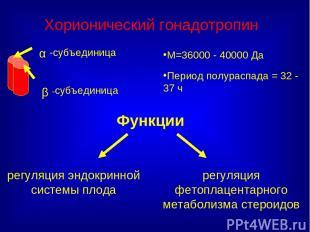 Функции М=36000 - 40000 Да Период полураспада = 32 - 37 ч Хорионический гонадотр