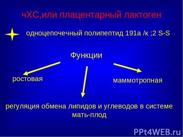 чХС,или плацентарный лактоген ростовая Функции регуляция обмена липидов и углеводов в системе мать-плод маммотропная