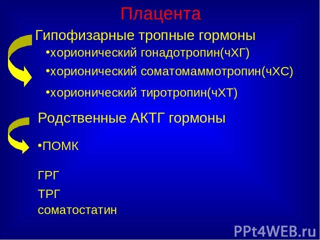 Плацента Гипофизарные тропные гормоны хорионический гонадотропин(чХГ) хорионический соматомаммотропин(чХС) хорионический тиротропин(чХТ) Родственные АКТГ гормоны ПОМК ГРГ ТРГ соматостатин