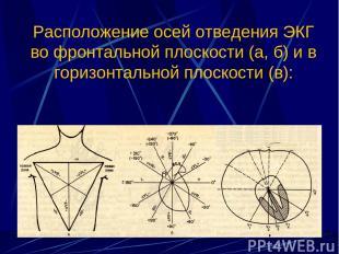 Расположение осей отведения ЭКГ во фронтальной плоскости (а, б) и в горизонтальн