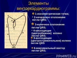 Элементы векторкардиограммы: 1-изоэлектрическая точка; 2-начальное отклонение пе