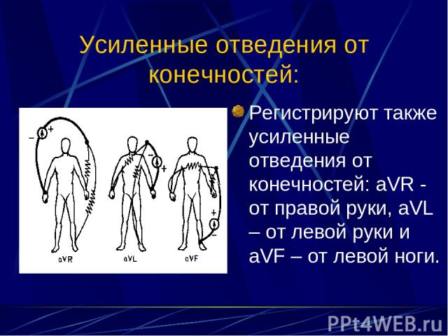 Усиленные отведения от конечностей: Регистрируют также усиленные отведения от конечностей: aVR - от правой руки, aVL – от левой руки и aVF – от левой ноги.