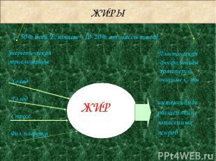 ЖИРЫ Энергетическая -триглицериды Пластическая -фосфолипиды -холестерин -жирные