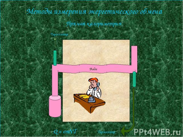 Методы измерения энергетического обмена Прямая калориметрия