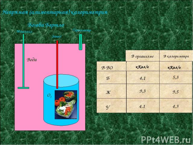 Непрямая (алиментарная) калориметрия