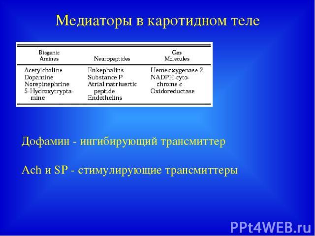Медиаторы в каротидном теле Дофамин - ингибирующий трансмиттер Ach и SP - стимулирующие трансмиттеры