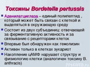 Токсины Bordetella pertussis Аденилатциклаза – единый полипептид , который может