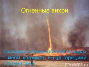 Огненные вихри частенько образуются при пожарах - могут возникать и над горящими