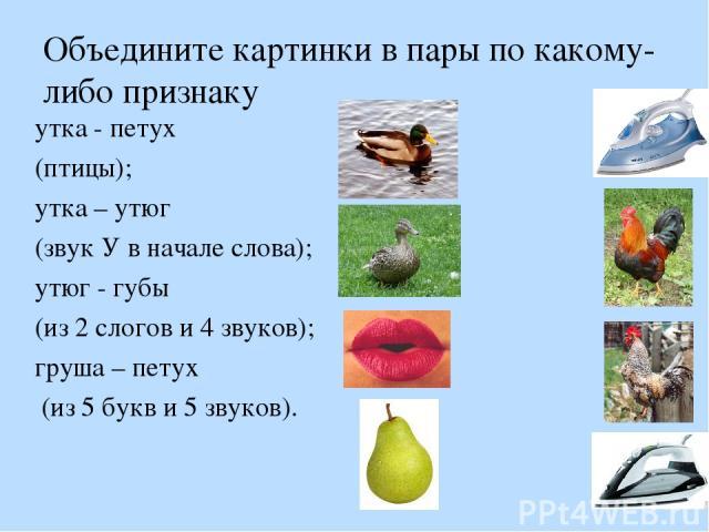 Объедините картинки в пары по какому-либо признаку утка - петух (птицы); утка – утюг (звук У в начале слова); утюг - губы (из 2 слогов и 4 звуков); груша – петух (из 5 букв и 5 звуков).