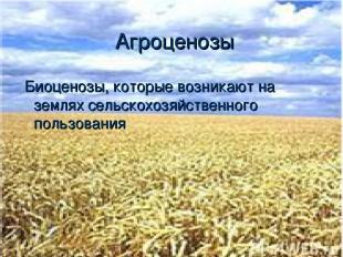 Агроценозы Биоценозы, которые возникают на землях сельскохозяйственного пользова