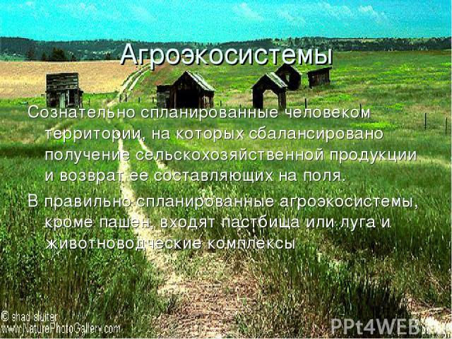 Агроэкосистемы Сознательно спланированные человеком территории, на которых сбалансировано получение сельскохозяйственной продукции и возврат ее составляющих на поля. В правильно спланированные агроэкосистемы, кроме пашен, входят пастбища или луга и …