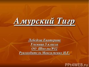 Амурский Тигр Лебедева Екатерина Ученица 5 класса ОО Школы№12 Руководитель Макси