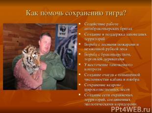 Как помочь сохранению тигра? Содействие работе антибраконьерских бригад Создание
