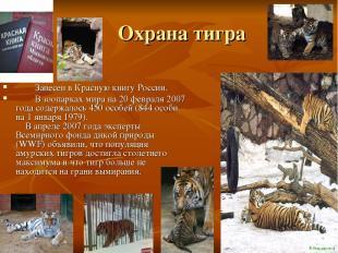 Охрана тигра Занесен в Красную книгу России. В зоопарках мира на 20 февраля 2007