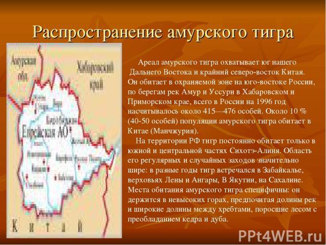 Распространение амурского тигра Ареал амурского тигра охватывает юг нашего Дальнего Востока и крайний северо-восток Китая. Он обитает в охраняемой зоне на юго-востоке России, по берегам рек Амур и Уссури в Хабаровском и Приморском крае, всего в Росс…