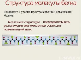 Структура молекулы белка Первичная структура – последовательность расположения а
