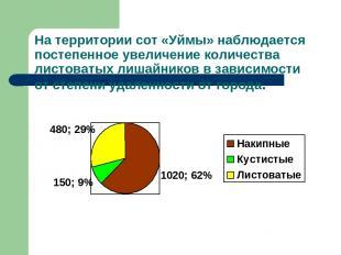 На территории сот «Уймы» наблюдается постепенное увеличение количества листоваты