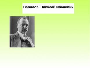 Вавилов, Николай Иванович