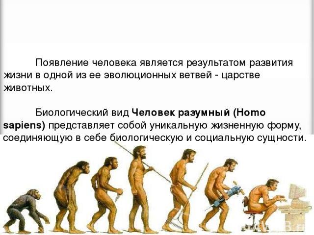 Появление человека является результатом развития жизни в одной из ее эволюционных ветвей - царстве животных. Биологический вид Человек разумный (Homo sapiens) представляет собой уникальную жизненную форму, соединяющую в себе биологическую и социальн…