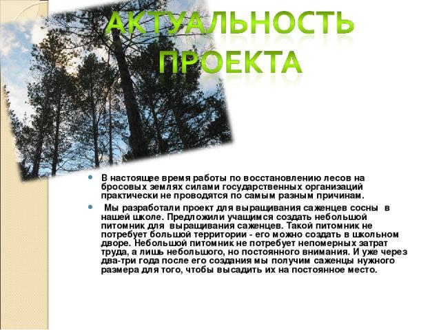 В настоящее время работы по восстановлению лесов на бросовых землях силами государственных организаций практически не проводятся по самым разным причинам. Мы разработали проект для выращивания саженцев сосны в нашей школе. Предложили учащимся создат…