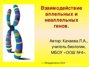 Взаимодействие аллельных и неаллельных генов. Автор: Качаева Л.А., учитель биоло