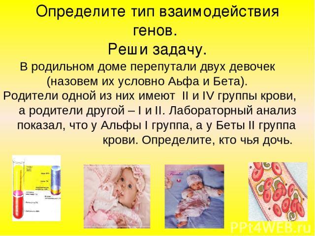 Определите тип взаимодействия генов. Реши задачу. В родильном доме перепутали двух девочек (назовем их условно Аьфа и Бета). Родители одной из них имеют II и IV группы крови, а родители другой – I и II. Лабораторный анализ показал, что у Альфы I гру…