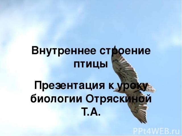 Внутреннее строение птицы Презентация к уроку биологии Отряскиной Т.А.