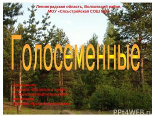 Ленинградская область, Волховский район, МОУ «Сясьстройская СОШ №2» Составила: у
