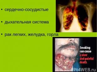 Заболевания курильщиков сердечно-сосудистые дыхательная система рак легких, желу