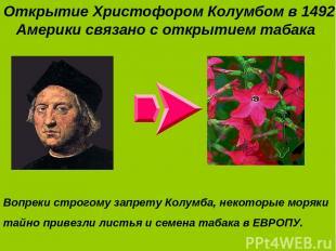 Открытие Христофором Колумбом в 1492 г. Америки связано с открытием табака Вопре