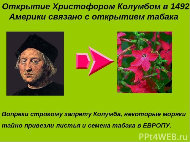 Открытие Христофором Колумбом в 1492 г. Америки связано с открытием табака Вопреки строгому запрету Колумба, некоторые моряки тайно привезли листья и семена табака в ЕВРОПУ.