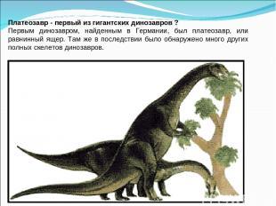 Платеозавр - первый из гигантских динозавров ? Первым динозавром, найденным в Ге