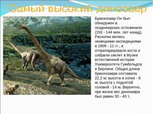 Брахиозавр Он был обнаружен в позднеюрских отложениях (150 - 144 млн. лет назад)