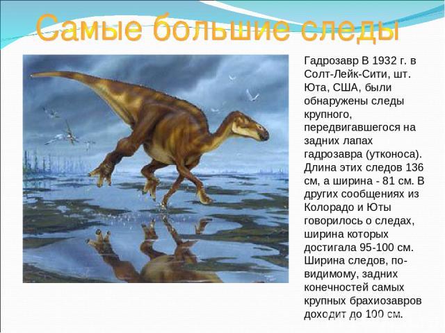 Гадрозавр В 1932 г. в Солт-Лейк-Сити, шт. Юта, США, были обнаружены следы крупного, передвигавшегося на задних лапах гадрозавра (утконоса). Длина этих следов 136 см, а ширина - 81 см. В других сообщениях из Колорадо и Юты говорилось о следах, ширина…