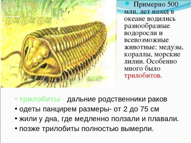 Примерно 500 млн. лет назад в океане водились разнообразные водоросли и всевозможные животные: медузы, кораллы, морские лилии. Особенно много было трилобитов. трилобиты - дальние родственники раков одеты панцирем размеры- от 2 до 75 см жили у дна, г…