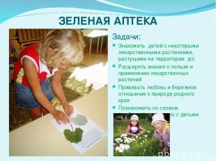 ЗЕЛЕНАЯ АПТЕКА Задачи: Знакомить детей с некоторыми лекарственными растениями,