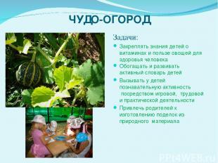 ЧУДО-ОГОРОД Задачи: Закреплять знания детей о витаминах и пользе овощей для здор