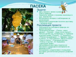 ПАСЕКА Задачи: Дать знания о жизни и развитии пчёл в природе Закрепить знания о
