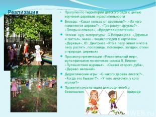 Реализация проекта: Прогулки по территории детского сада с целью изучения деревь