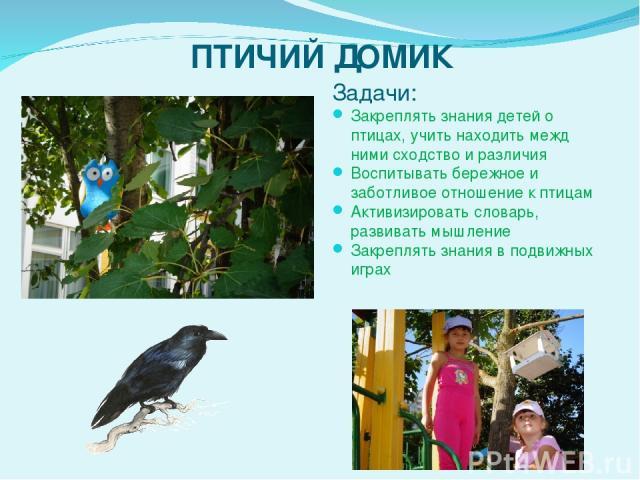 ПТИЧИЙ ДОМИК Задачи: Закреплять знания детей о птицах, учить находить межд нимисходство и различия Воспитывать бережное и заботливое отношение к птицам Активизировать словарь, развивать мышление Закреплять знания в подвижных играх