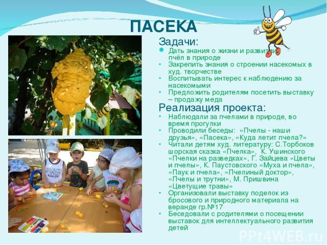 ПАСЕКА Задачи: Дать знания о жизни и развитии пчёл в природе Закрепить знания о строении насекомых в худ. творчестве Воспитывать интерес к наблюдению за насекомыми Предложить родителям посетить выставку – продажу меда Реализация проекта: Наблюдали …