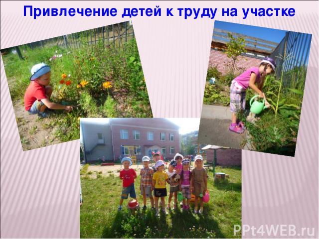 Привлечение детей к труду на участке